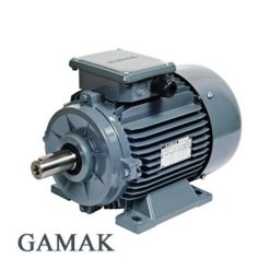 الکتروموتور گاماک
